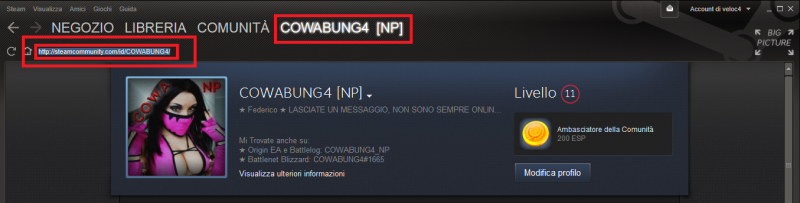 5STEAM.png